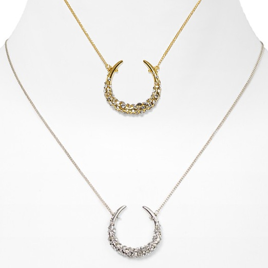 Best Pull out all the Tops... - Alexis Bittar Crystal Encrusted Horse Shoe Necklace in Silver and Gold