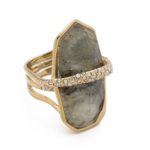 Best Jewels that Make the Best Statement this Season! - Alexis Bittar Alexis Large Orbiting Ring
