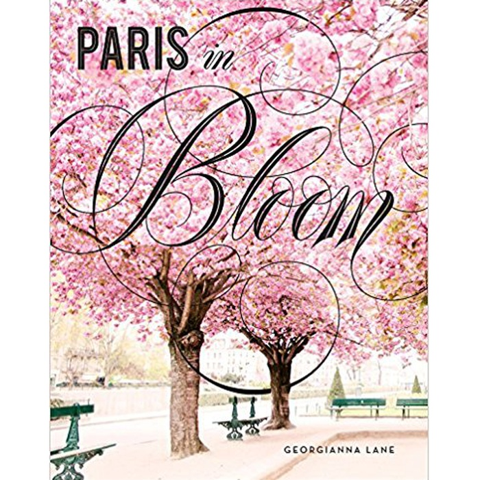 Best Spring Home Accents Under $100 - Georgianna Lane: Paris in Bloom