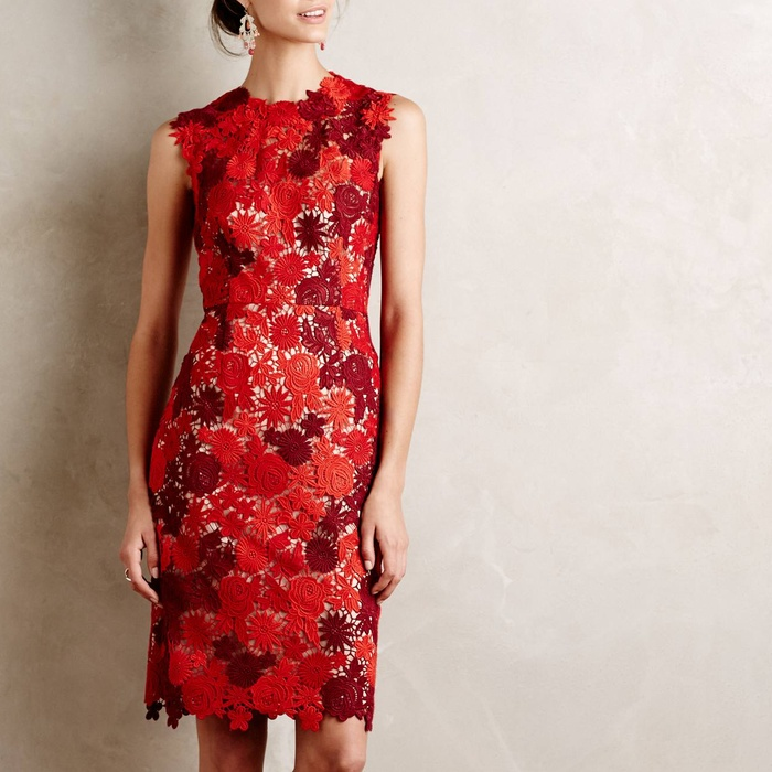 Best Lace Dresses - HD in Paris Lace Garden Pencil Dress