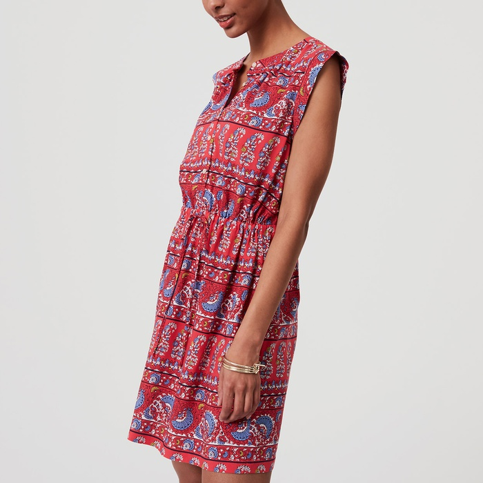 Best Spring Wear to Work Dresses - Loft Fan Floral Cap Sleeve Shirtdress