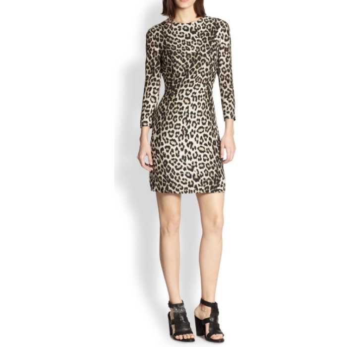 Best Animal Print Dresses - Rag & Bone Isadora Leopard-Print Silk Dress