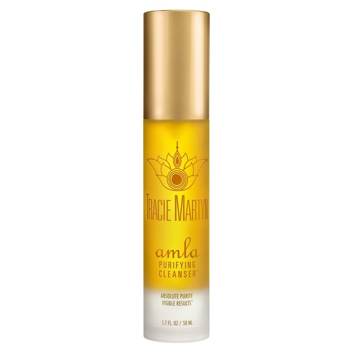 Best Natural Face Cleansers - Tracie Martyn Amla Purifying Cleanser